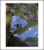 image 15309 @openphoto.net.net