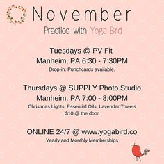 PRACTICE with Yoga Bird and be a part of our community. Specializing in anti-aging and stress reducing yoga practices. Local and online classes provide something for everyone!