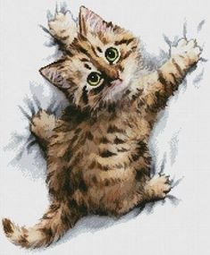 Hang On - cross stitch pattern designed by Tereena Clarke. Category: Cats.