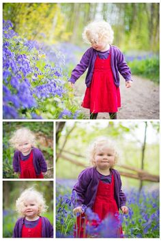 Beautiful Bluebell Mini Sessions <3 Seasonal mini session available throughout the year. By #JoCopePhotography