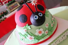 Lady bug cake for nature themed birthday party Pretty Cakes, Beautiful Cakes, Amazing Cakes, Ladybug Cakes, Ladybug Party, Gateaux Cake, Creative Cakes, Creative Food, Fancy Cakes