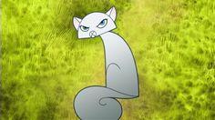 grumpy chma