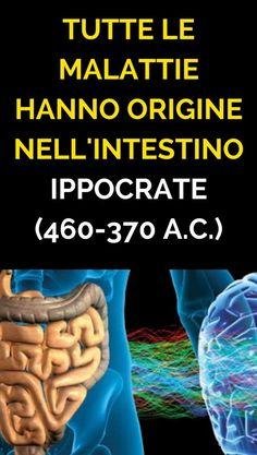 Tutte le malattie hanno origine nell'intestino (Ippocrate-460-370 a.C.)