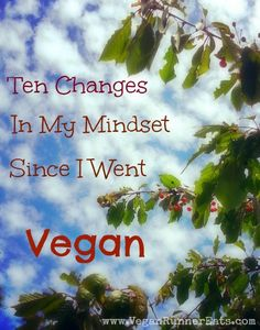 Ten Changes in My Mindset I've Had Since Going Vegan - Part 2 of My Veganniversary Celebration
