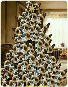 Grumpy Cat Christmas Tree - I want one!