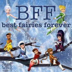 Whose your BFF?mine would be silvermist and the other fairy, in the brown outfit(Forgot her name just know vit starts with an f) who is the animal fairy.