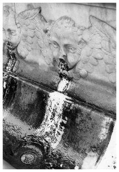 Florentine fountain gelatin silver print selenium toned di SilverprintArte su Etsy