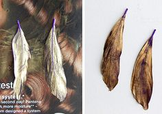 DIY: Spray Painted Feather Earrings