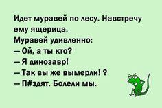 02babd0496664560052b71854eea9c54.jpg (564×376)