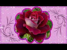 С Днем Рождения Самое красивое поздравление женщине - YouTube Succulents, Flowers, Youtube, Plants, Anna, Crochet, Quotes, Succulent Plants, Ganchillo