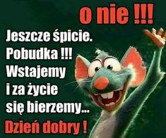Weekend Humor, Motto, Good Morning, Affirmations, Nostalgia, Funny, Disney, Sodas, Good Morning Funny