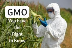 GMO - YOU HAVE THE RIGHT TO KNOW! HealthFaithStrength.com
