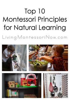 Practical life is one of the most important areas of Montessori education. Because the child's independence is such an important goal in Montessori, care of self is an especially important part of practical life. Montessori Practical Life, Montessori Homeschool, Montessori Classroom, Montessori Toddler, Montessori Activities, Montessori Elementary, Montessori Bedroom, Maria Montessori, Homeschooling