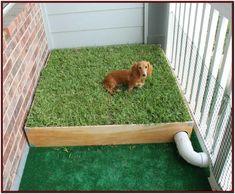 27 Ideas De Como Hacer Un Baño Para Tu Perro En Esta Cuarenten Baño Para Perros Espacios Para Perros Mascotas