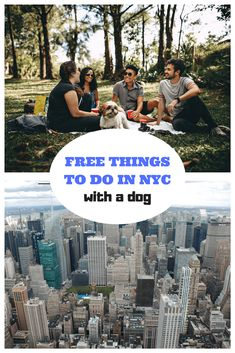 Get your groom on at unleashed you can wash your pooch yourself traveling to new york city with your dog check out these dog friendly options that solutioingenieria Gallery