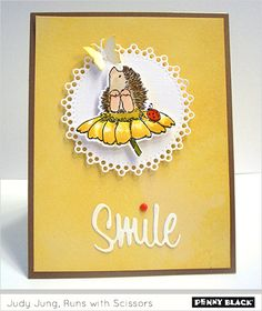 Sweet Penny Black hedgehog on flower on cheery yellow background