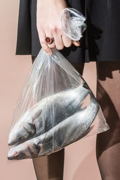 Fishes, 2013 (personal work) by Maurizio Di Iorio