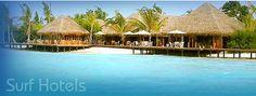 Maldives - dreamy diving and great waves - Lohifushi resort