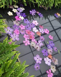 #OrchidsVanda#OrchidsInTheWater Floral Wreath, Wreaths, Flowers, Plants, Home Decor, Floral Crown, Decoration Home, Door Wreaths, Room Decor