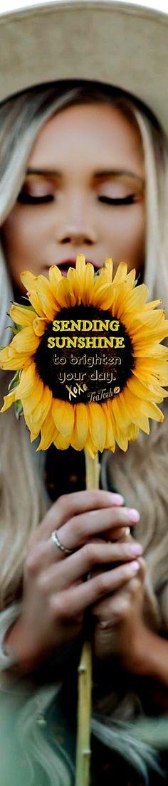 Sunflower Garden, Sunflower Fields, Gladiolus, Woodstock, Flower Power, Falling In Love, Beautiful Flowers, Dandelion, Peonies