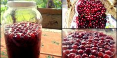 The sour cherry brandy that Romanians make in their homes for almost two thousands of years is an amazing beverage that you MUST try if you come to visit.