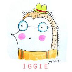 Iggie the Hedgehog   Linzer Lane Blog