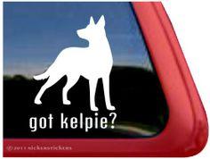Our Barney 9 is an Australian Kelpie 🐺🐾 Undertale Dog, Schnoodle Dog, Harlequin Great Danes, Hedgehog Pet, Window Decals, Grey Hound Dog, Shih Tzu Puppy, Adhesive Vinyl, Service Dogs