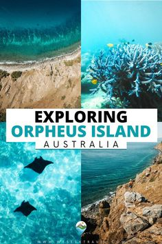 Orpheus Island is a tropical Great Barrier Reef Island and part of the Greater Palm Island group. For adventure travelers, Orpheus Island snorkeling and hiking are some of the best of the Great Barrier Reef Islands.