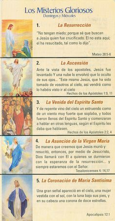 SANTO ROSARIO EN VIDEO     Misterios Gozosos                                ... Praying The Rosary Catholic, Rosary Prayer, Catholic Religion, Holy Rosary, God Prayer, Catholic Gifts, Roman Catholic, Rosary In Spanish, Catholic Prayers In Spanish