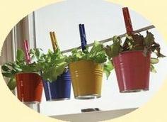 Love this idea for the Kitchen window~ P. Luiz ~: Innovative Herb Gardens