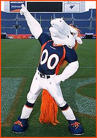 Miles is the Denver Broncos' mascot. As you can see, he is a white pony, but he loves the orange and blue!