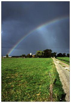 Rain is coming, Vlaardingen, Netherlands Copyright: Emiel Elgersma