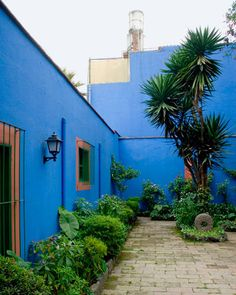 Frida Kahlo's blue house