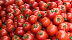 Pomodoro timer apps keep you focused by reminding you to take breaks frequently. Learn more about the Pomodoro technique, and discover the 10 best Pomodoro timer apps. Nutrients In Tomatoes, Pomodoro Timer, Modern Farmer, Farmers Market Recipes, Green News, Seasonal Food, Organic Farming, Superfood, Agriculture