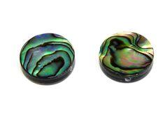 4x Flat Round Natural Paua Abalone Shell by KolibriBeadSupplies