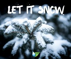 Our team specializes in Commercial Snow Removal and environmentally friendly deicing.