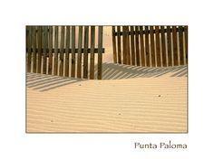 Desert s dream - Bolonia, Cadiz