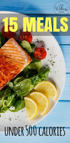 THE WELLNESS BLOG 15 Meals Under 500 Calories Weight Loss/Fat Loss/Diet/Lifestyle/Recipes/Meal Prep/Healthy