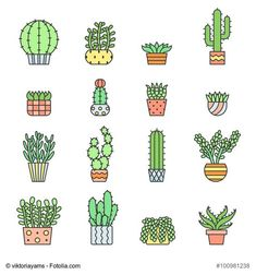 Succulents and cacti outline multicolored vector icons set. Modern minimalistic…