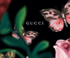 gucci 圖片 in 2019 Macbook wallpaper, Ios 11 wallpaper