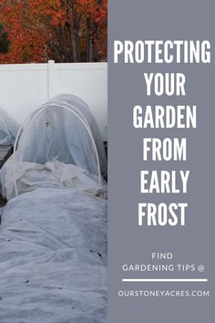 Protecting your garden from Early Frost can extend your growing season by several weeks.   #gardening #vegetablegardening  #frost #backyardgardening