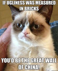 If ugliness was measured in bricks you'd be the Great Wall of China!