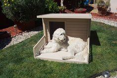 New Age Pet ecoChoice Santa Fe Chalet Dog House & Reviews   Wayfair