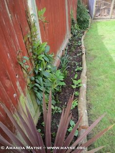The Good life in Waterlooville – Up-Cycling in the garden
