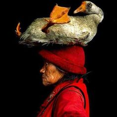 """A Chinese woman with her pet goose -- a wonderful photo that Cristina Goettsch Mittermeir shot. At first she thought the woman was carrying the goose to market, but then discovered the pair were best friends."" Animal Wise Facebook page."