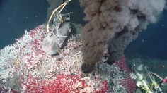 Theres a treasure trove on the seafloorand that could be a bad thing