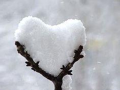 C'était l'hiver dans le fond de mon cœur.