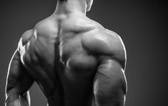 bulletproof your back workout