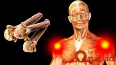 This Will Happens to Your Body If You Start Eating 2 Cloves a Day. Cloves are the unopened fragrant pink flower bud of the evergreen clove tree, native to Indonesia. Cloves Benefits, Famous Supermodels, Increase Bone Density, Regulate Blood Sugar, Healthy Liver, Headache Remedies, Bone And Joint, Types Of Cancers, Meals