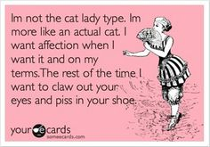 !!! hate cats !!! so true!
